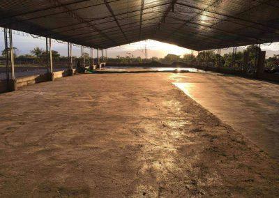 Proyecto Hacienda el Placer 2